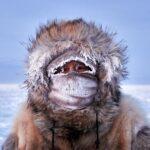 Wayne White - South Pole Antarctica